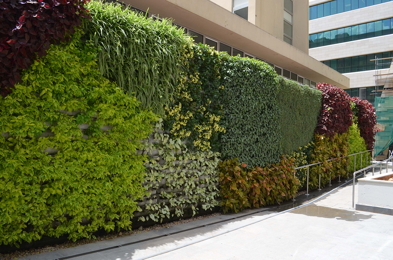 green wall image